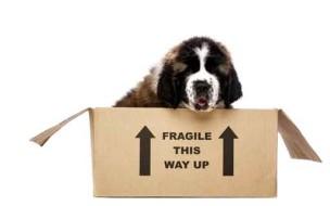Carton de déménagement