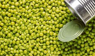 Tout savoir sur la conservation des aliments