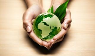 Impact sur l'environnement