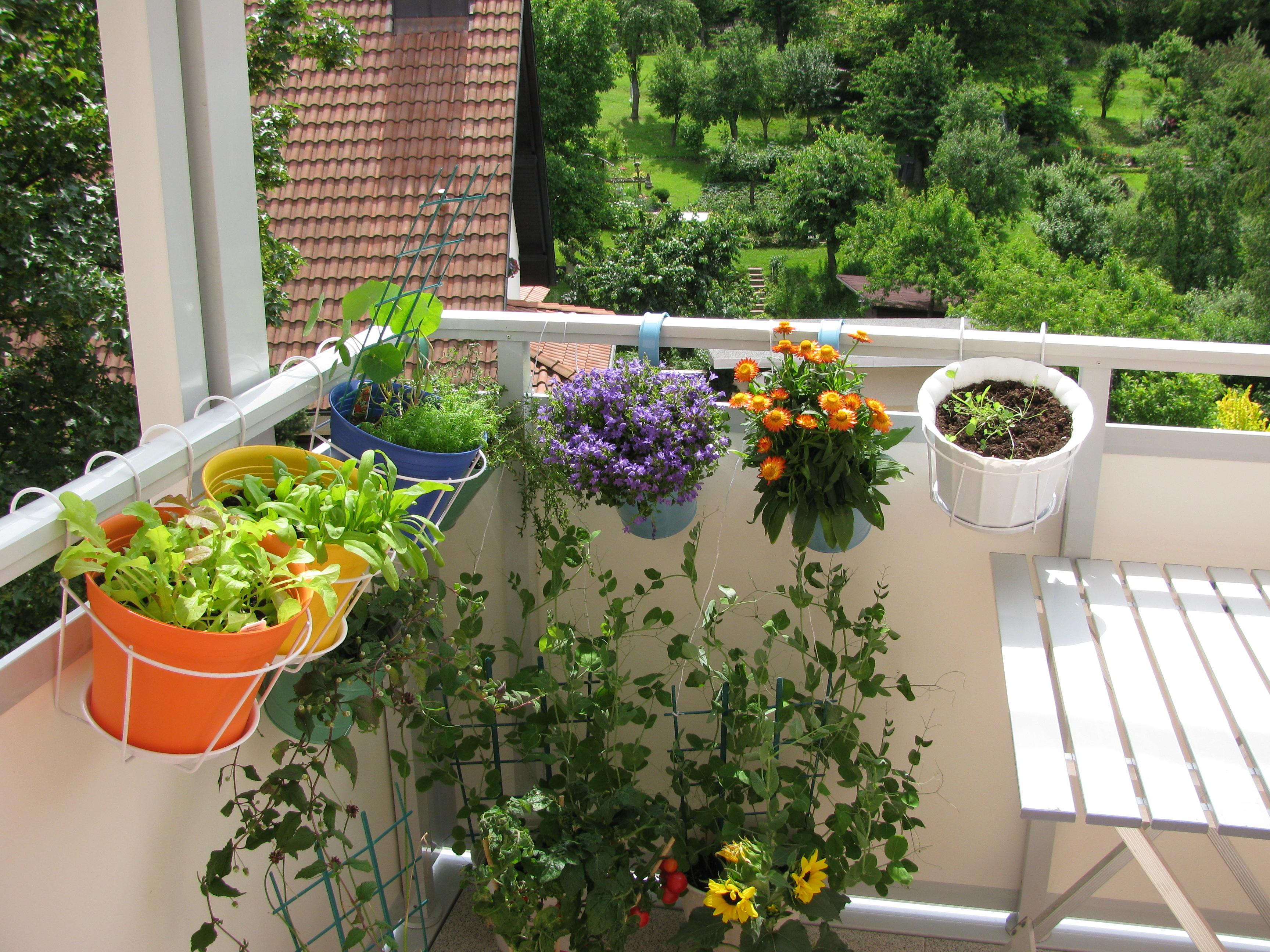 Aménager Son Balcon Avec Des Palettes comment aménager son balcon pour en faire un coin de nature ?
