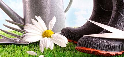 Guide et conseils jardinage