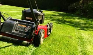 Tout l'outillage motorisé pour jardiner