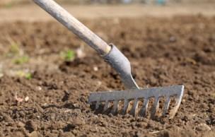 Ratisser la terre avant de semer