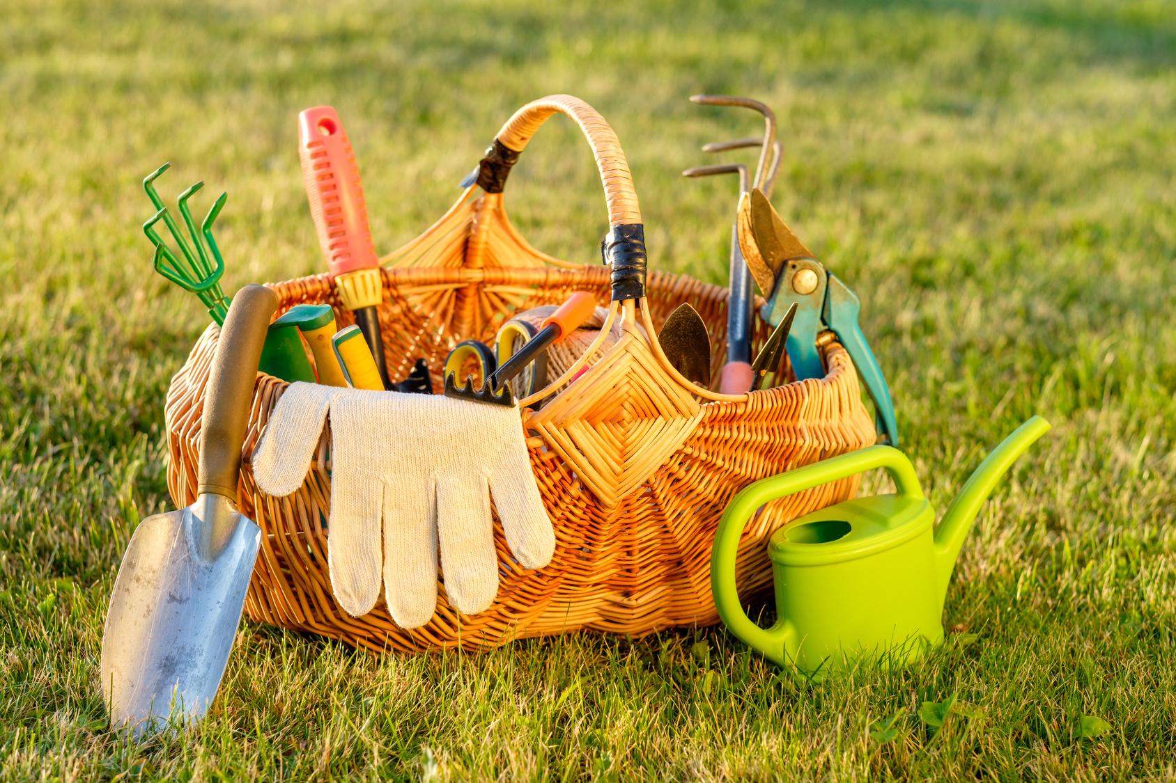le kit du jardinier les outils basiques de jardinage. Black Bedroom Furniture Sets. Home Design Ideas