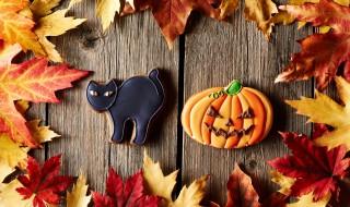 Halloween chat noir citrouille décoration DIY