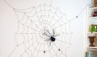 Toile d'araignée géante 01