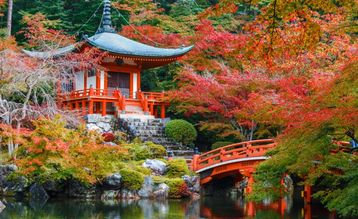 Tout savoir sur le Japon et les toilettes japonaises