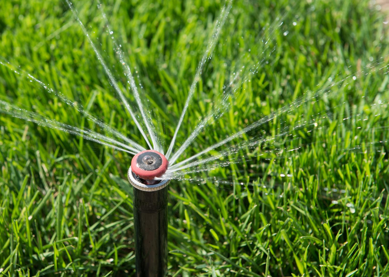 Comment choisir une pompe d 39 arrosage de jardin for Choisir tuyau d arrosage