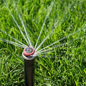 Comment choisir une pompe d'arrosage de jardin ?