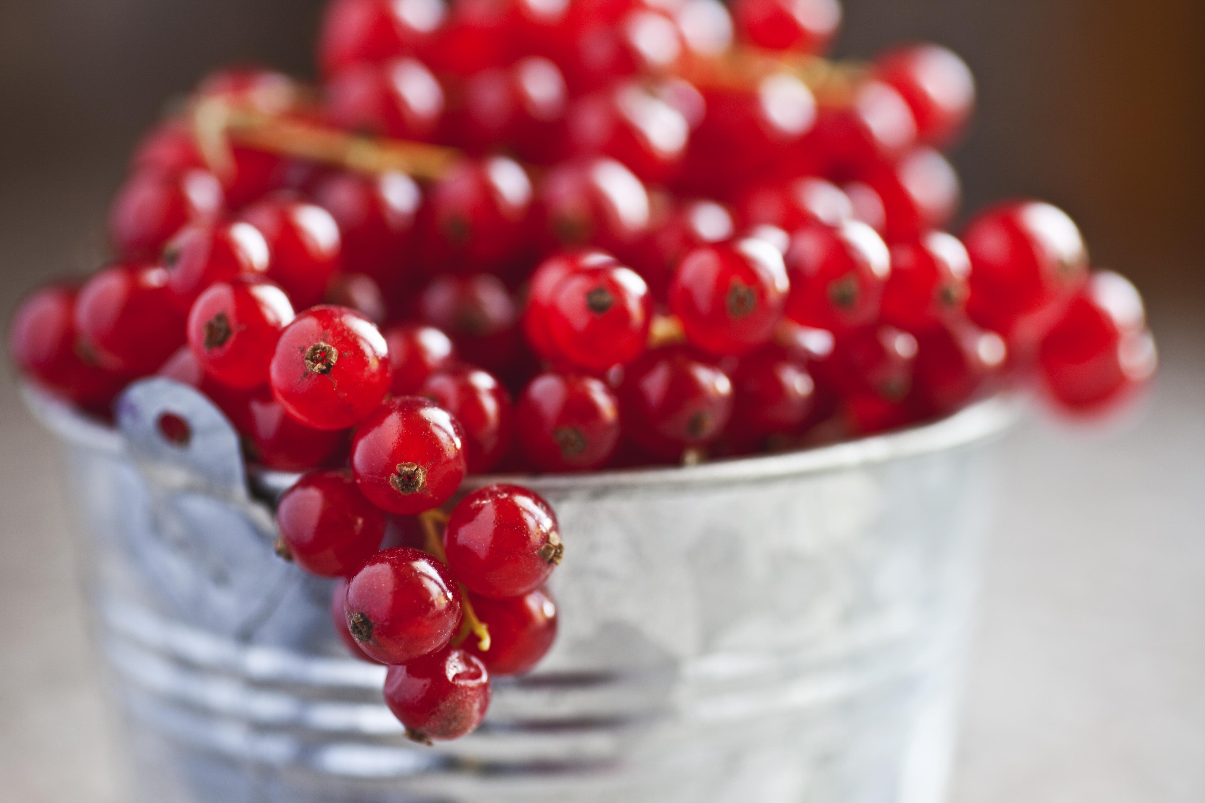 corbeille a fruit rouge. Black Bedroom Furniture Sets. Home Design Ideas