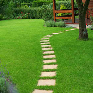 Comment faire une pelouse ?