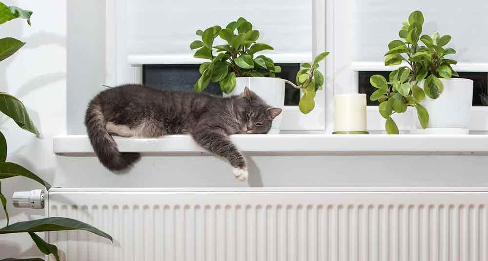 Comment choisir son chauffage électrique avec Mon Magasin général