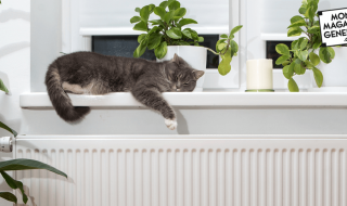 Comment choisir son chauffage électrique