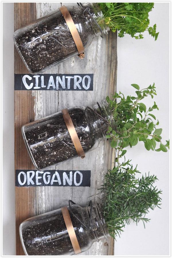 Plantes aromatiques en intérieur - vertical
