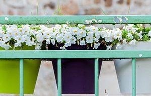 Comment choisir son support de jardinière ?