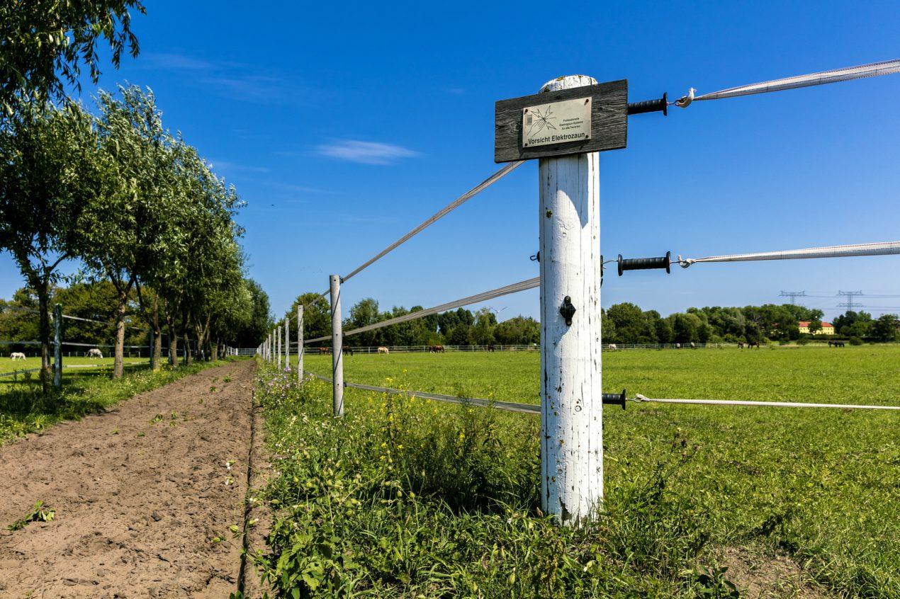 Apprendre à installer une clôture électrique
