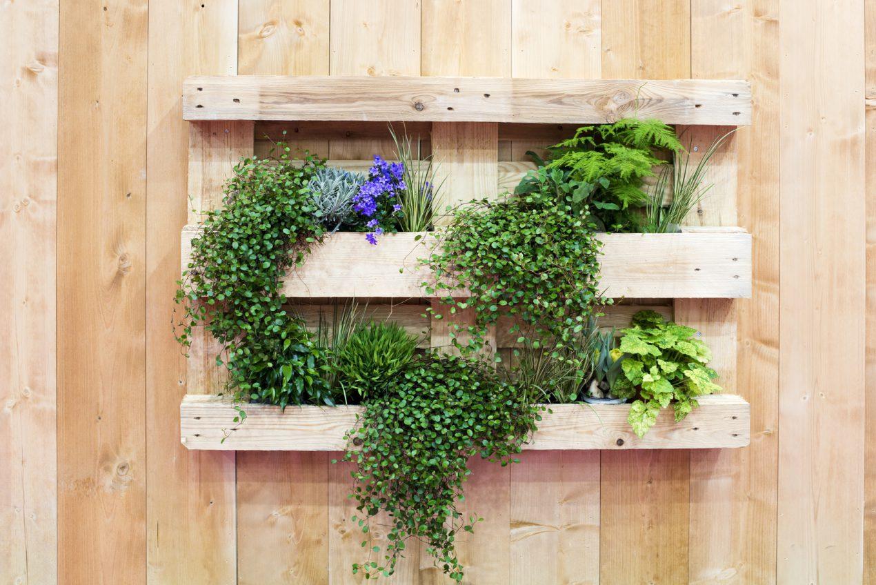 Plantes Aromatiques En Jardinière comment faire une jardinière en palette ? - le tuto diy de