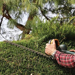 Quels outils électroportatifs pour le jardin choisir ?