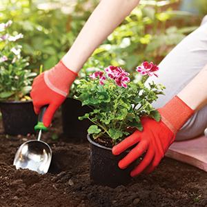 Quels vêtements pour la jardinage avoir ?