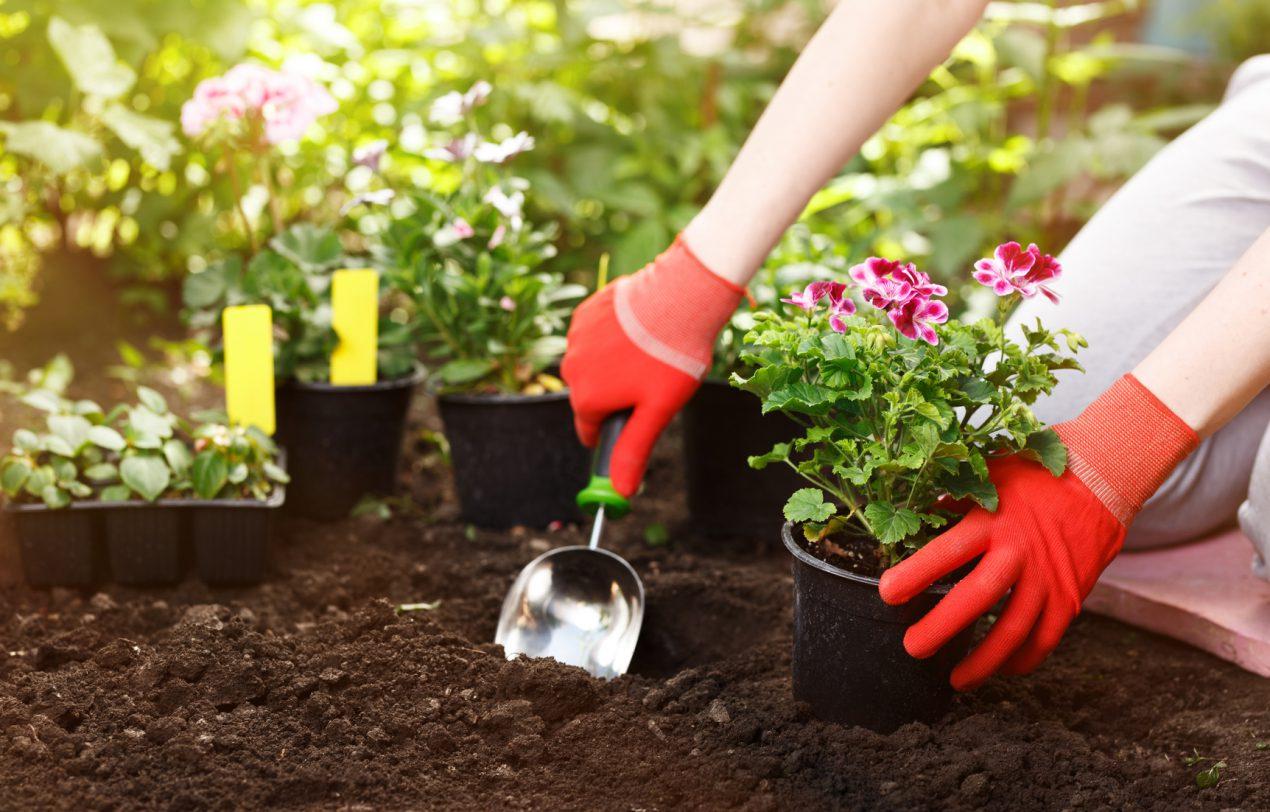 Quels vêtements pour le jardinage doit-on posséder ?