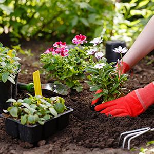Comment aménager son jardin?