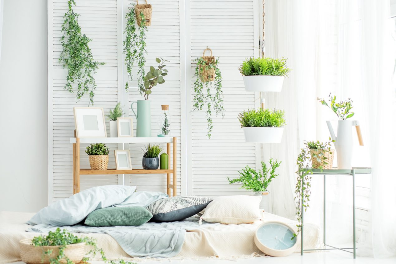 Suspension Pour Plantes D Intérieur comment fabriquer une suspension pour plantes ?