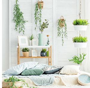 Fabriquer une suspension pour plantes