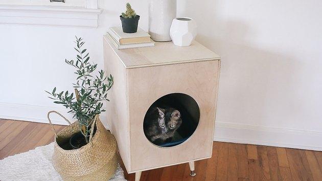 Fabriquer un meuble cache litiere pour son chat avec Mon Magasin Général